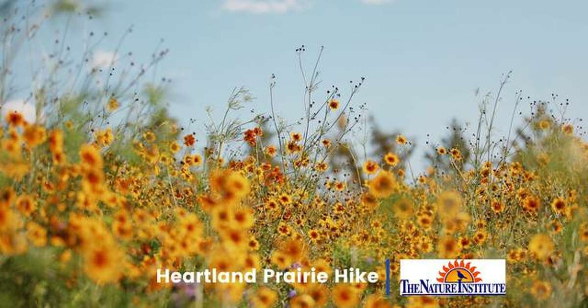 The Nature Institute will host a Heartland Prairie Hike at Gordon Moore Park, 4550 College Ave., in Alton 5:30-7 p.m. on Tuesday.