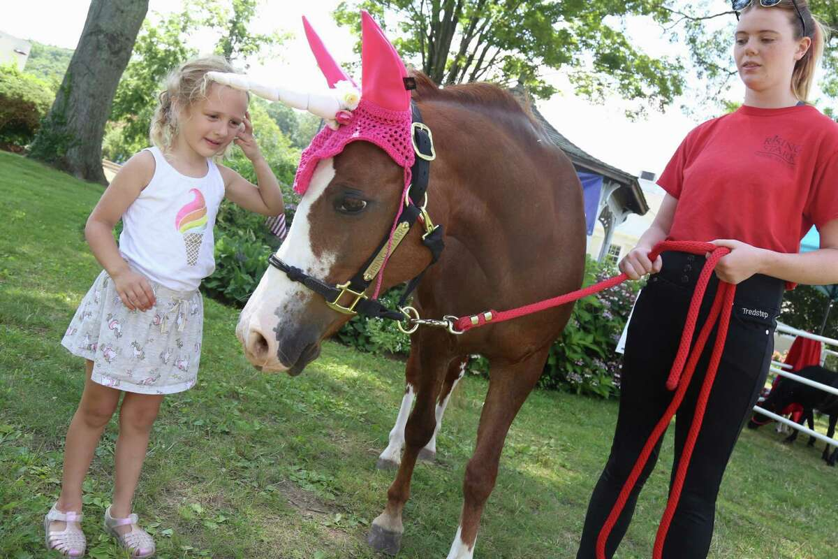 Harper Pawlowicz, 4, of Stamford, meets Pixie, of Rising Starr Horse Rescue in Wilton, and her handler, Ava Craig, at the Chamber of Commerce's Street Fair & Sidewalk Sales on Saturday.