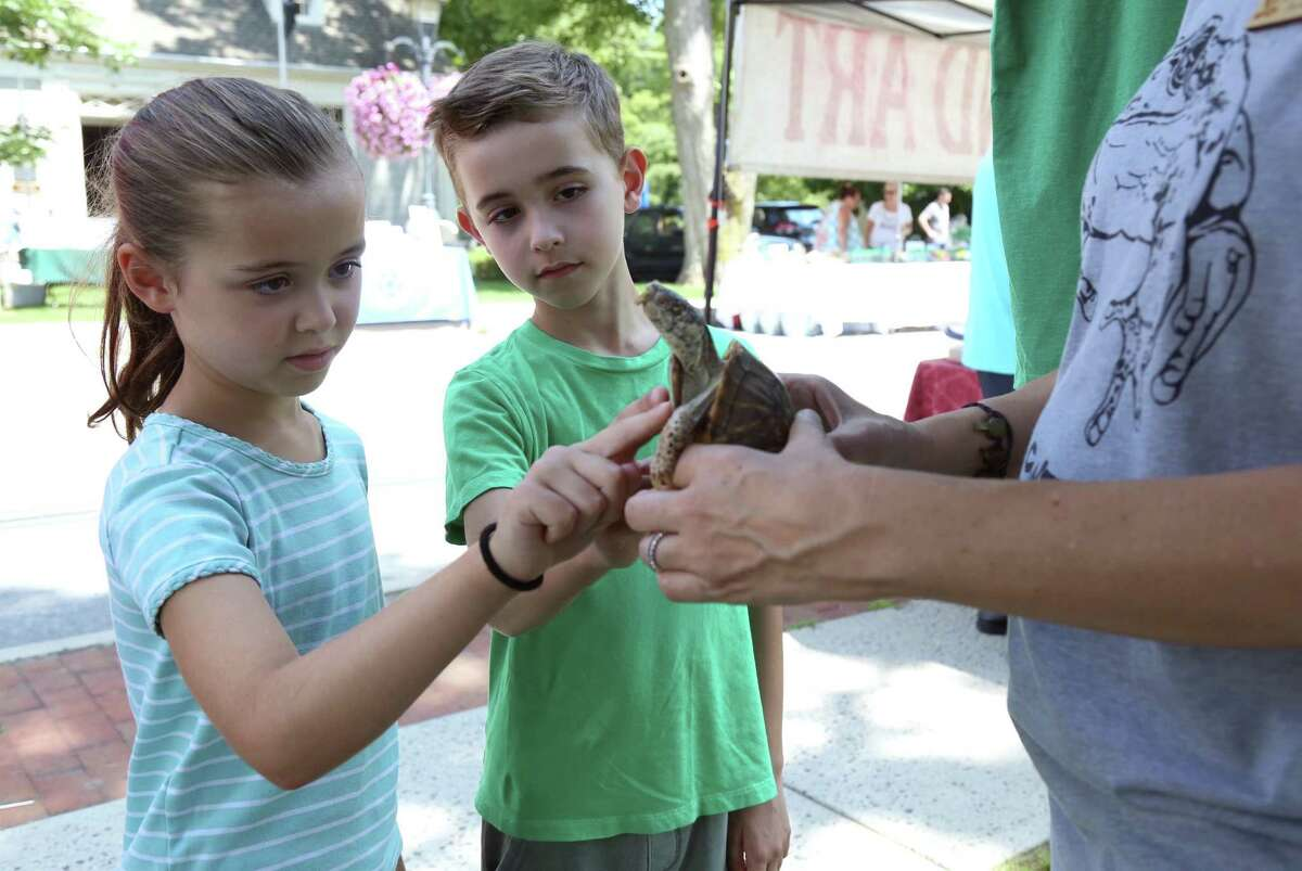Alexandra Spetsaris, 6, and her brother, Serafim, 8, of Wilton, meet Juanita, an animal ambassador from the Woodcock Nature Center at the Chamber of Commerce's Street Fair & Sidewalk Sales on Saturday.