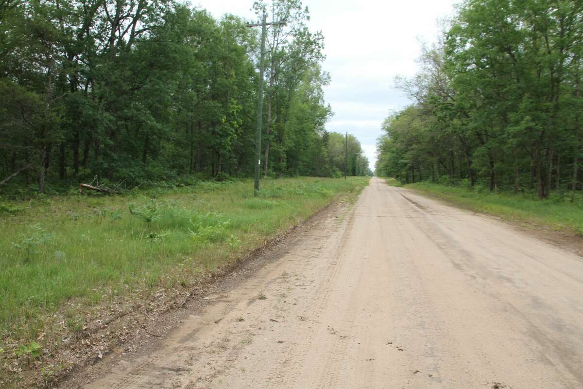 A forested parcel in Yates Township, Lake County, 28-plus acres on Nelson Road (Title-Check Lot 10057).