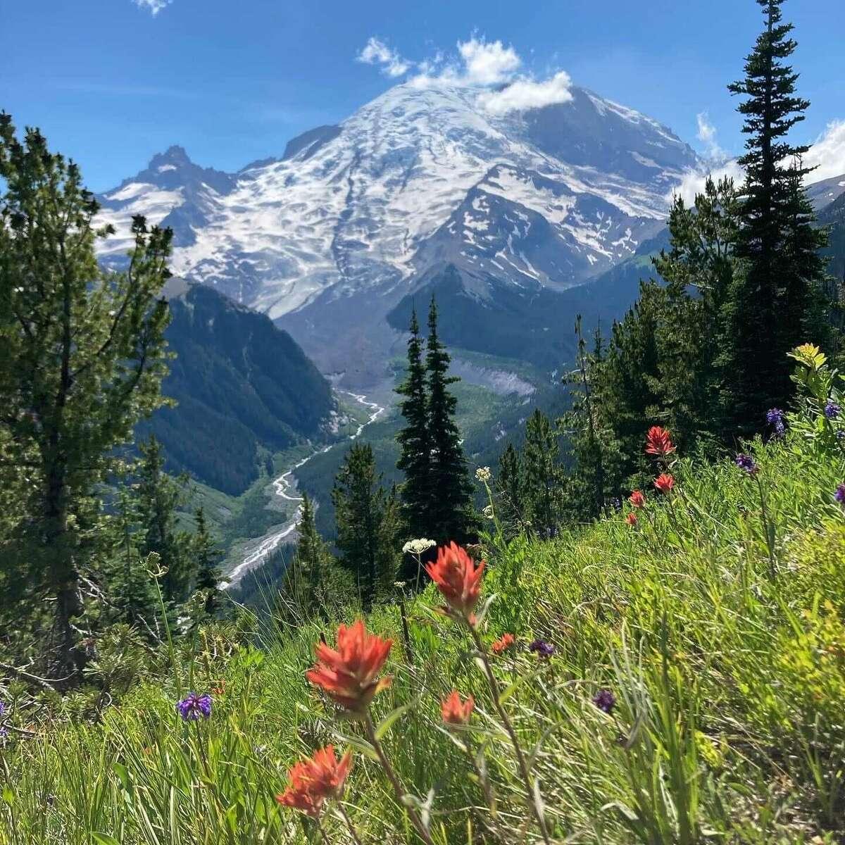 Mount Rainier - July 2021