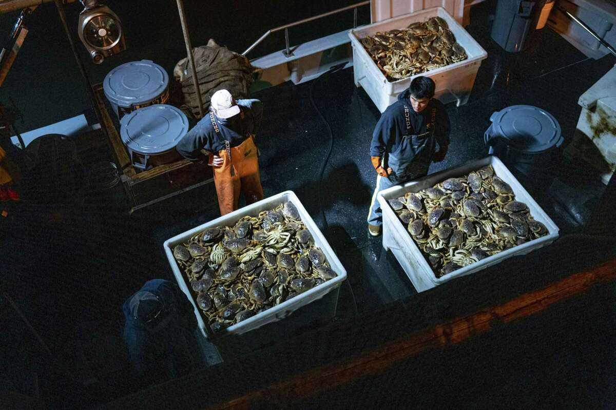 Workers prepare to offload Dungeness crab from a boat on Pier 45 in the Fisherman's Wharf district in San Francisco, California, on Jan. 13, 2021.