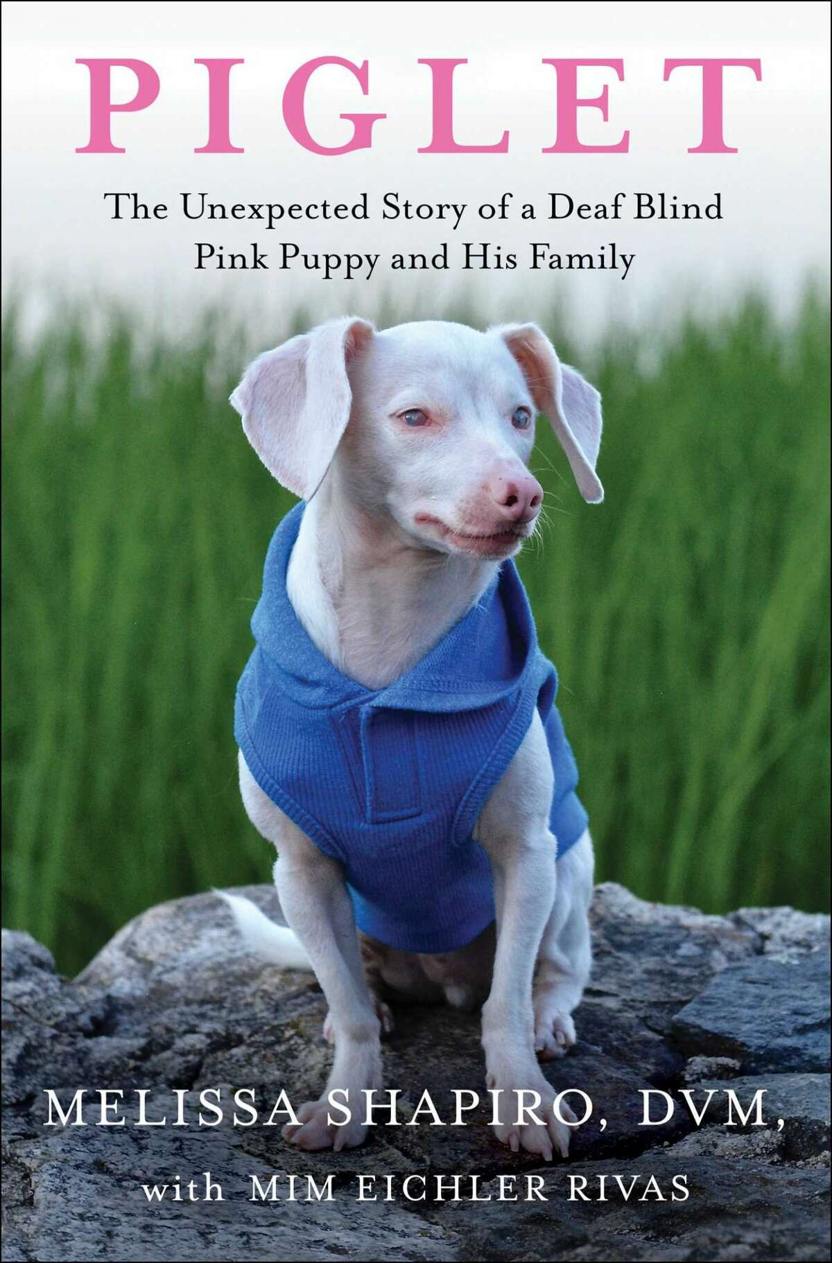 """""""Piglet, The Unexpected Story of a Deaf Blind Pink Puppy and His Family"""" will be published on Aug. 3."""