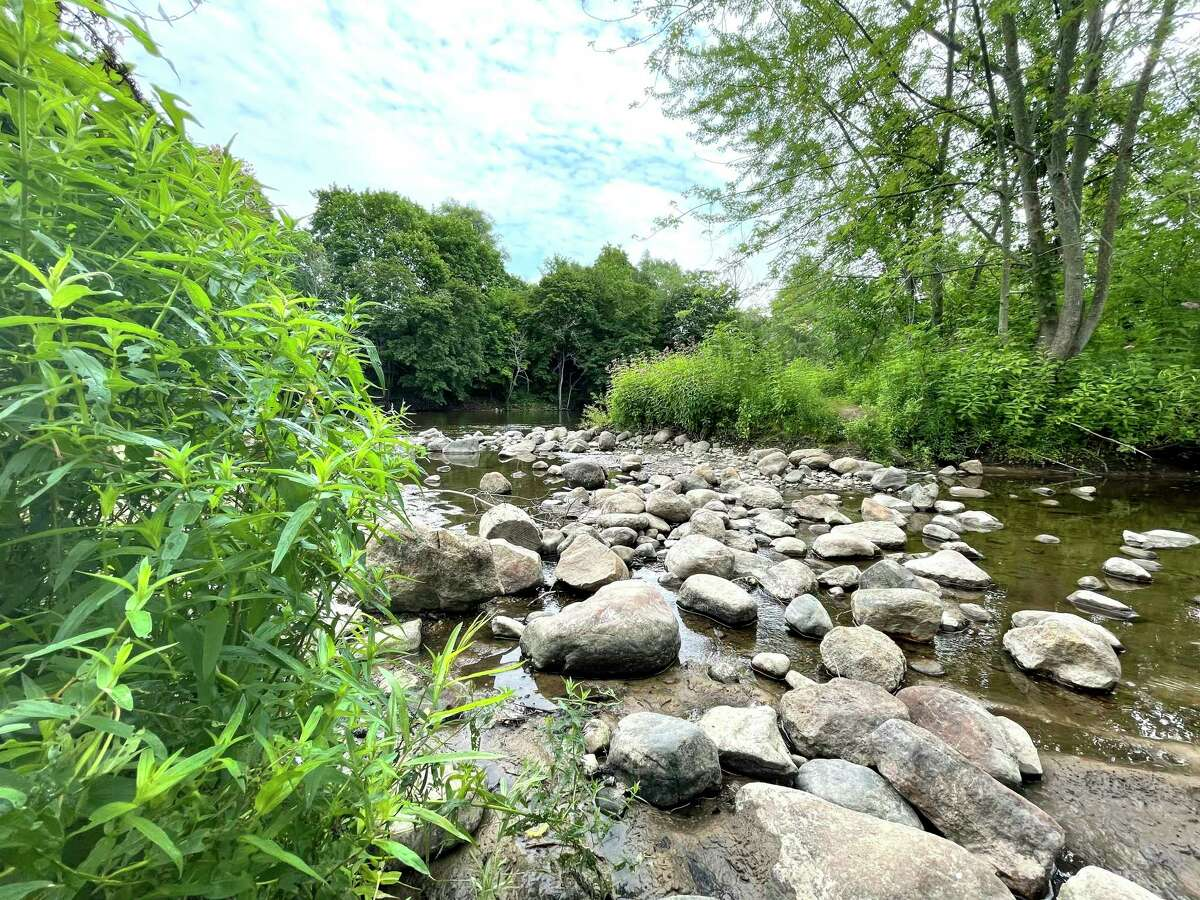 A pile of rocks is pictured sitting in a portion of the calm Muskegon River -- nestled between bright, green bushes -- inside of Hemlock Park. (Pioneer photo/Bradley Massman)