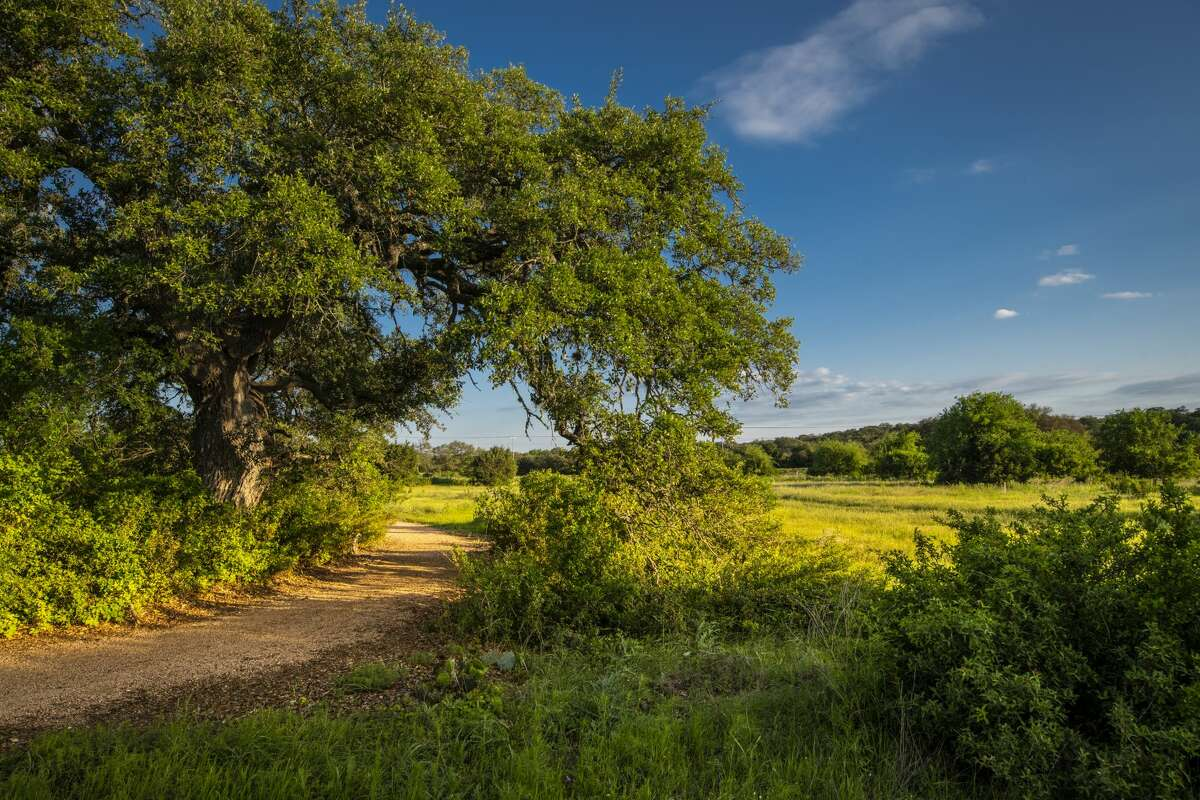 4,000 acres of glorious Hill Country land