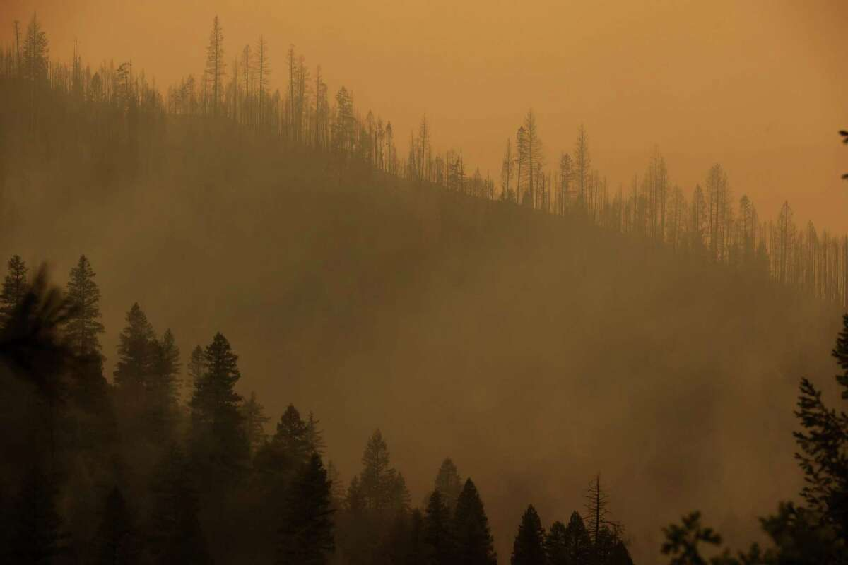 Burned trees line a hill as the Dixie Fire burns near Quincy, Calif. The Dixie Fire - the 14th largest wildfire in California's history burning in Butte and Plumas counties - grew 9,000 acres after a night of comparatively quiet fire activity.