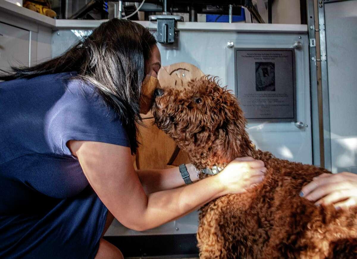Katt Ortiz-Manalo Aubry, left, greets Pluto after doggie day care.
