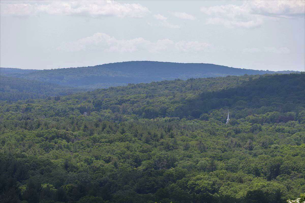 The overlook at Coney Rock Preserve has a view of a church steeple, with the spire being one of the only manmade things in the lush landscape.