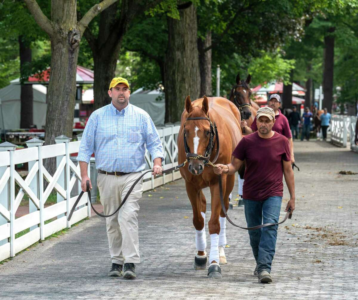 First Captain, who will run in the Curlin Stakes, enters the paddock for a schooling session at Saratoga Race Course on Wednesday, July 28, 2021, in Saratoga Springs, N.Y.