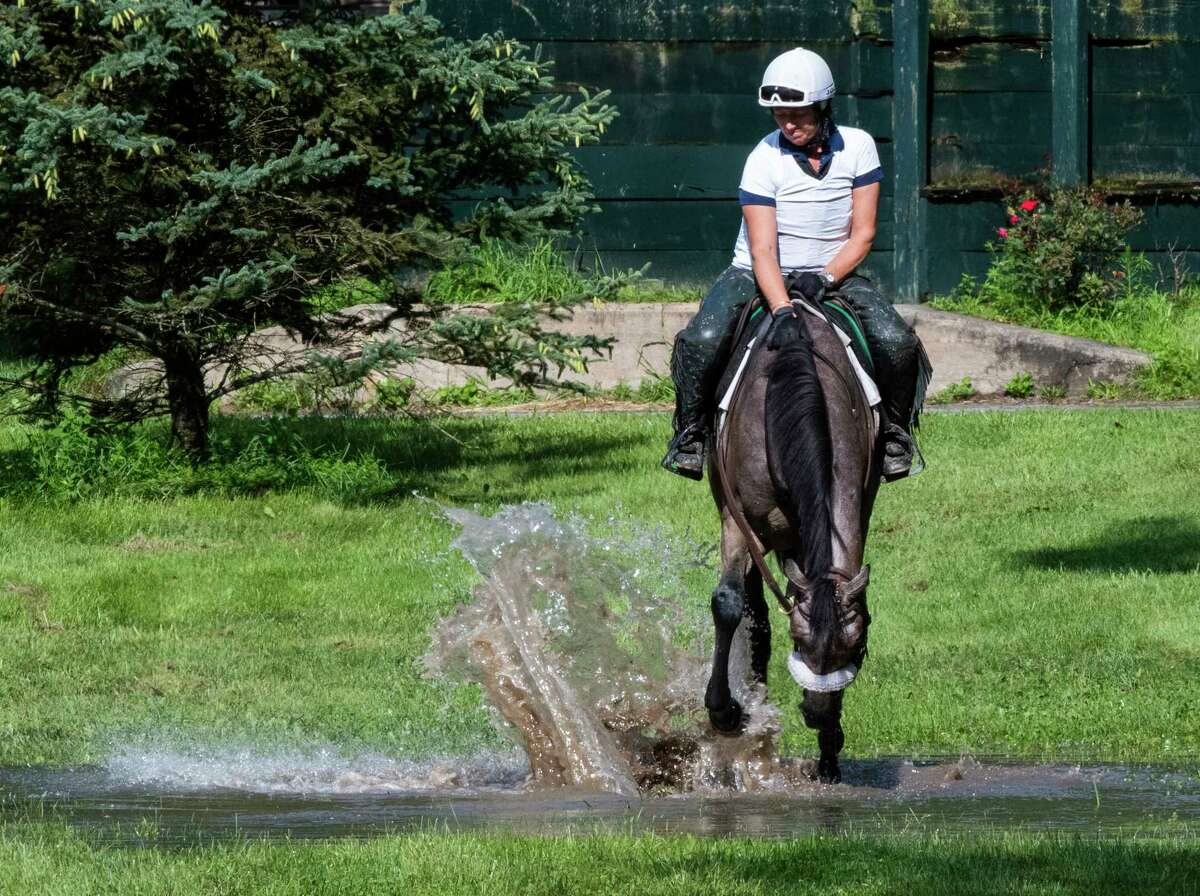 Like any other wo year old child, filly Cupere with assistant trainer for Barclay Tagg, Robbin Smullen plays in one of the big puddles caused by a heavy rain storm this morning at The Saratoga Race Course Friday July 30, 2021 in Saratoga Springs, N.Y. Photo special to the Times Union by Skip Dickstein