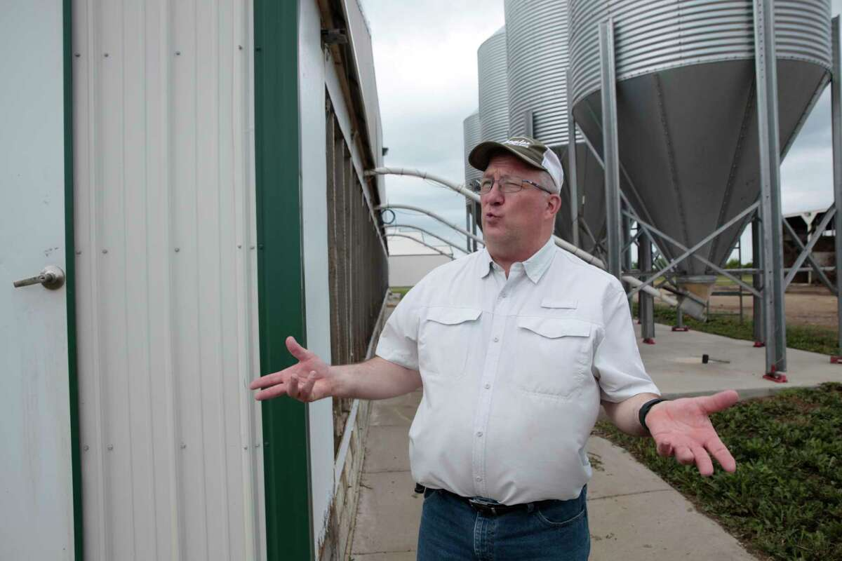 bDwight Mogler explains operations at his family's hog barns in Alvord, Iowa on July 9, 2021. He says the hog barns would need to be expanded to say in compliance with California's Proposition 12.
