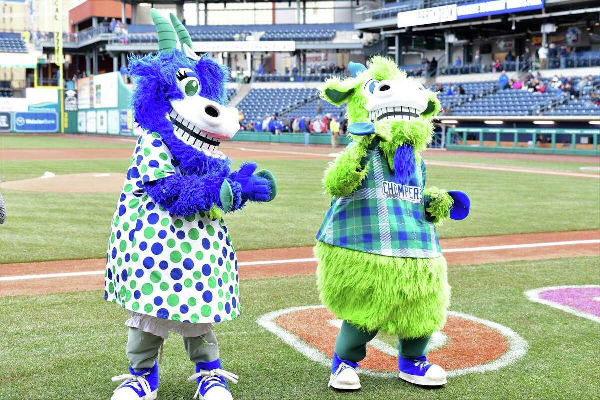 The Yard Goats hosted auditions Saturday for performers to play mascots Chompers (right) and Chew Chew (left). The team staff has been short on performers this season because of last year's canceled season due to the pandemic.
