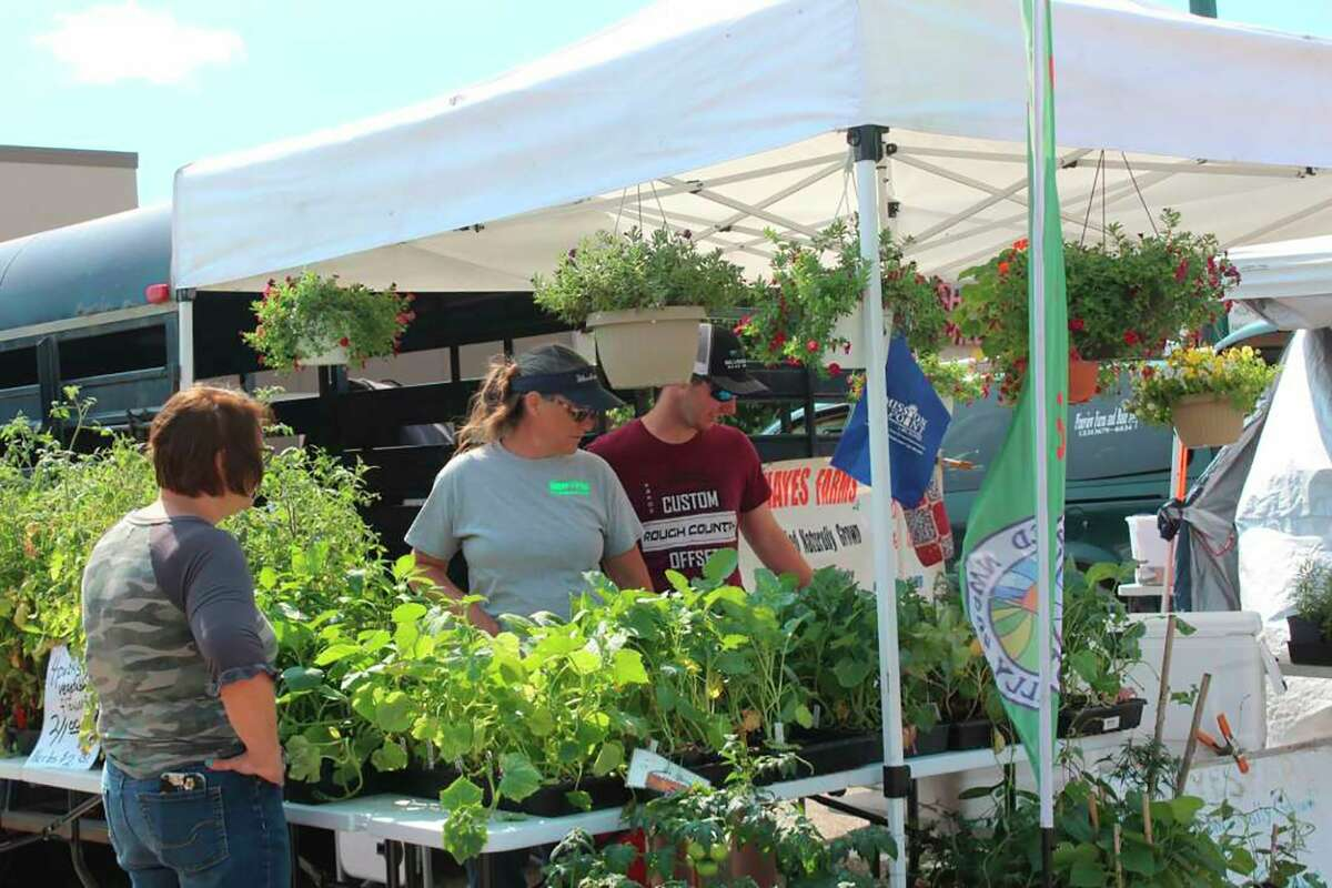 The hotJuly sun brought out visitors to check outtheFarmer's Market in downtown Big Rapids. (Pioneer photo/Olivia Fellows)