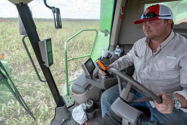Corey Ring harvests sorghum on his family's farm. The U.S.-China Phase 1 trade deal that went into effect in early 2020 has reopened the China market for Texas farmers.