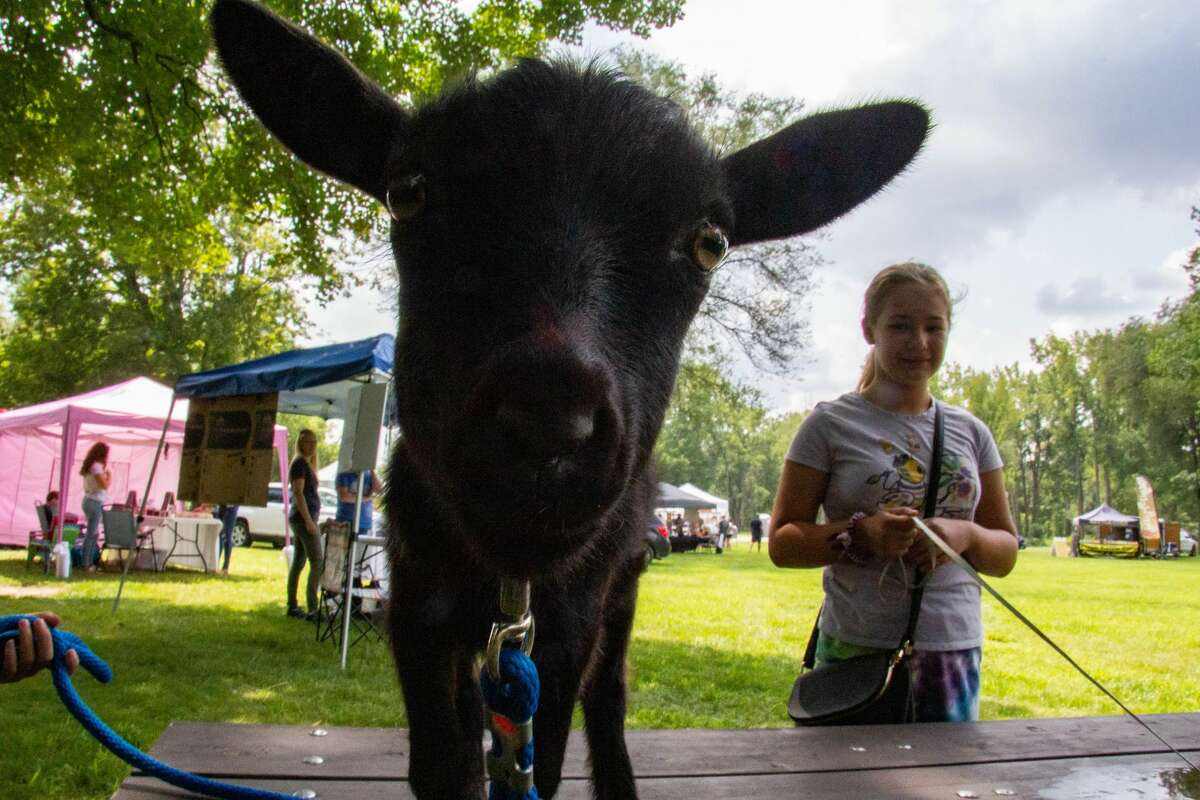 Jenna Roper of Midland with Bucky, her family's baby goat at the Pop Up PaloozaSunday, Aug. 1, 2021 in Sanford's Porte Park. (Drew Travis/for the Daily News)