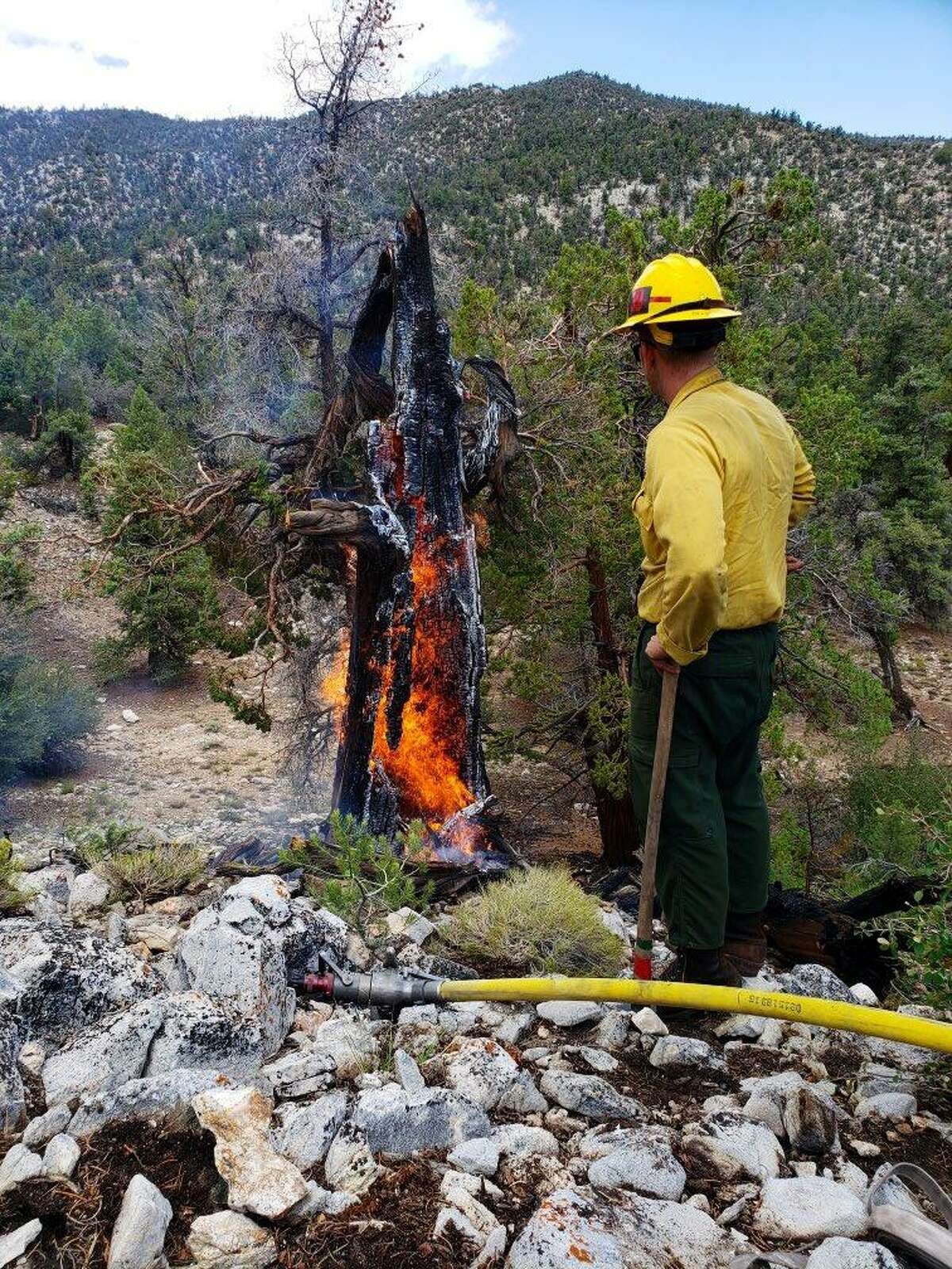 U.S. Forest Service fire crews responded to several lightning strike fires in Southern California this weekend.