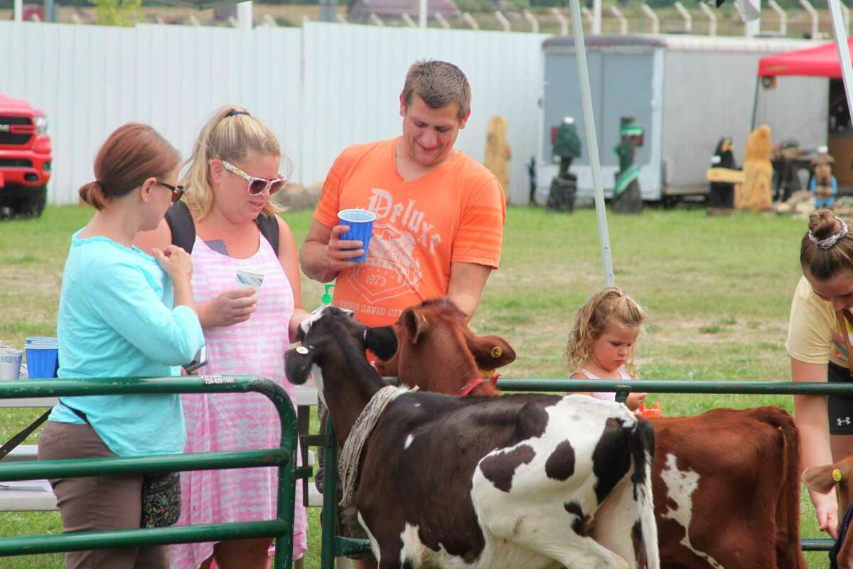 """Animals from the Michigan State University Extension 4-H program are a popular """"attraction"""" at the Manistee County Fair. (File photo)"""