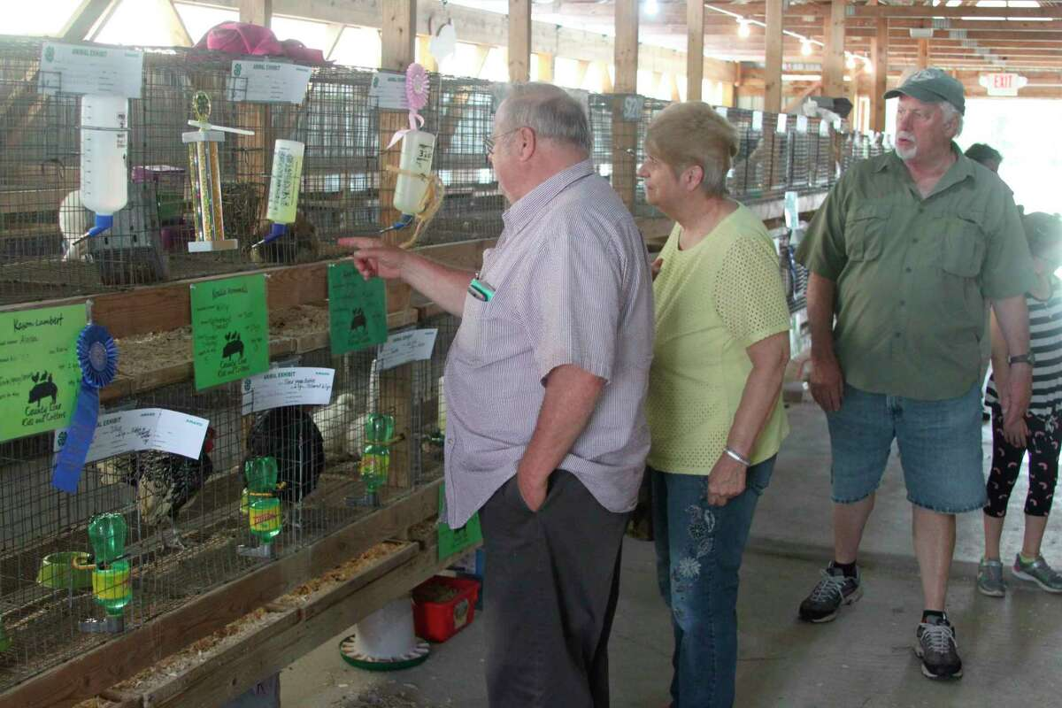 Fair-goers look at 4-H rabbits during a past Manistee County Fair. This year, rabbit judging will take place at 8 a.m. on Aug. 18.(File photo)