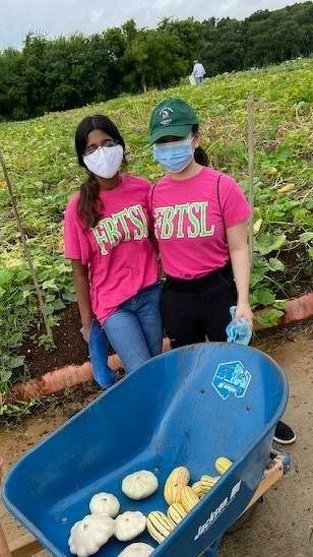 Leah Philip, left, and Annebelle Cheong harvest vegetables at Gods Garden in Sugar Land as part of their Fort Bend Teen Service League service.