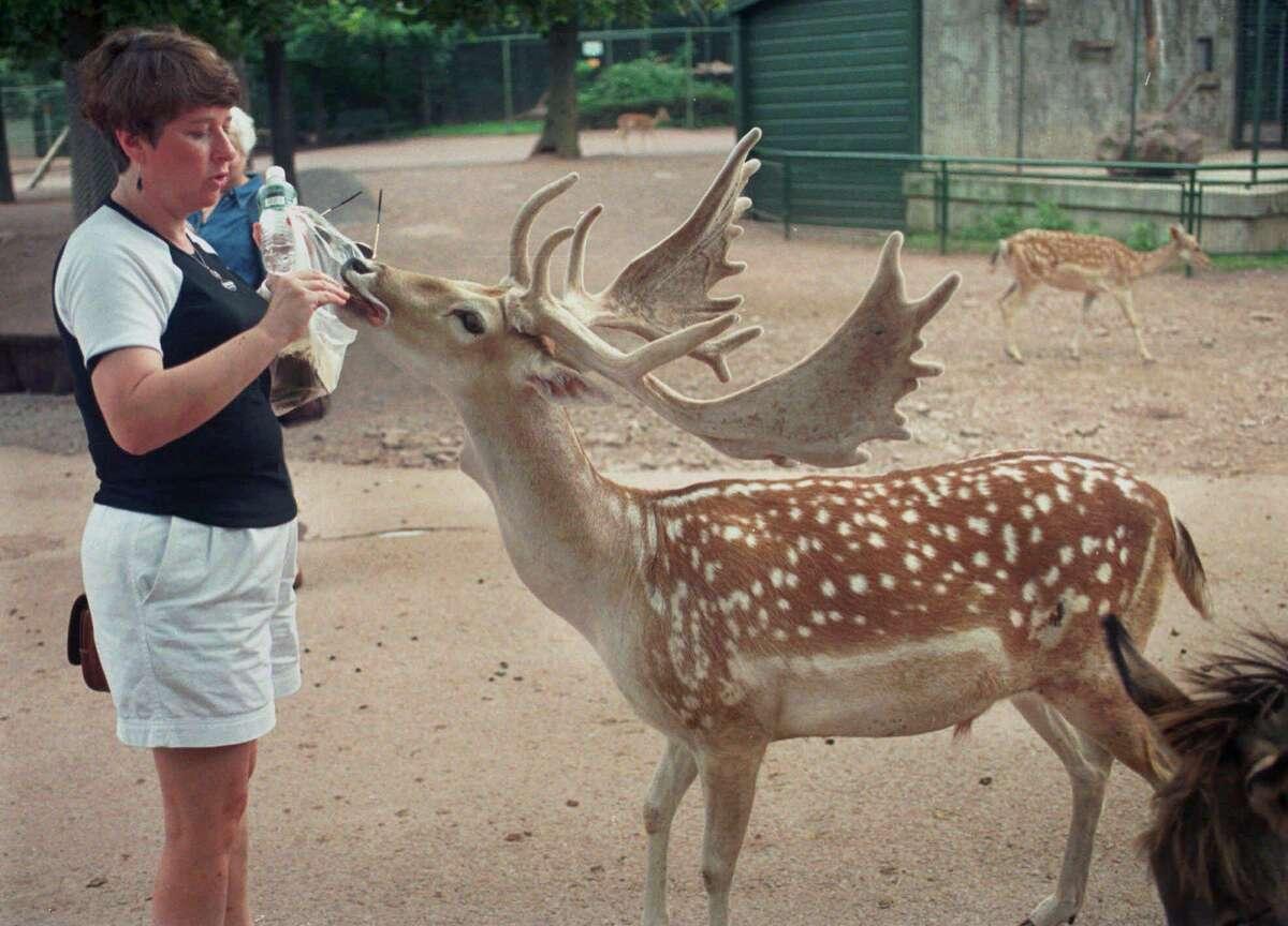 The Catskill Game Farm in Catskill, N.Y., in 1998.