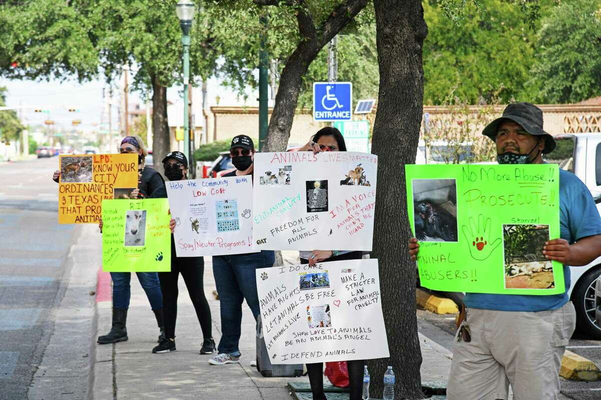 Independent animal rescuers gathered outside city hall to raise awareness on a plan for the city to provide affordable spay and neuter vouchers to help curb the growing stray animal population.