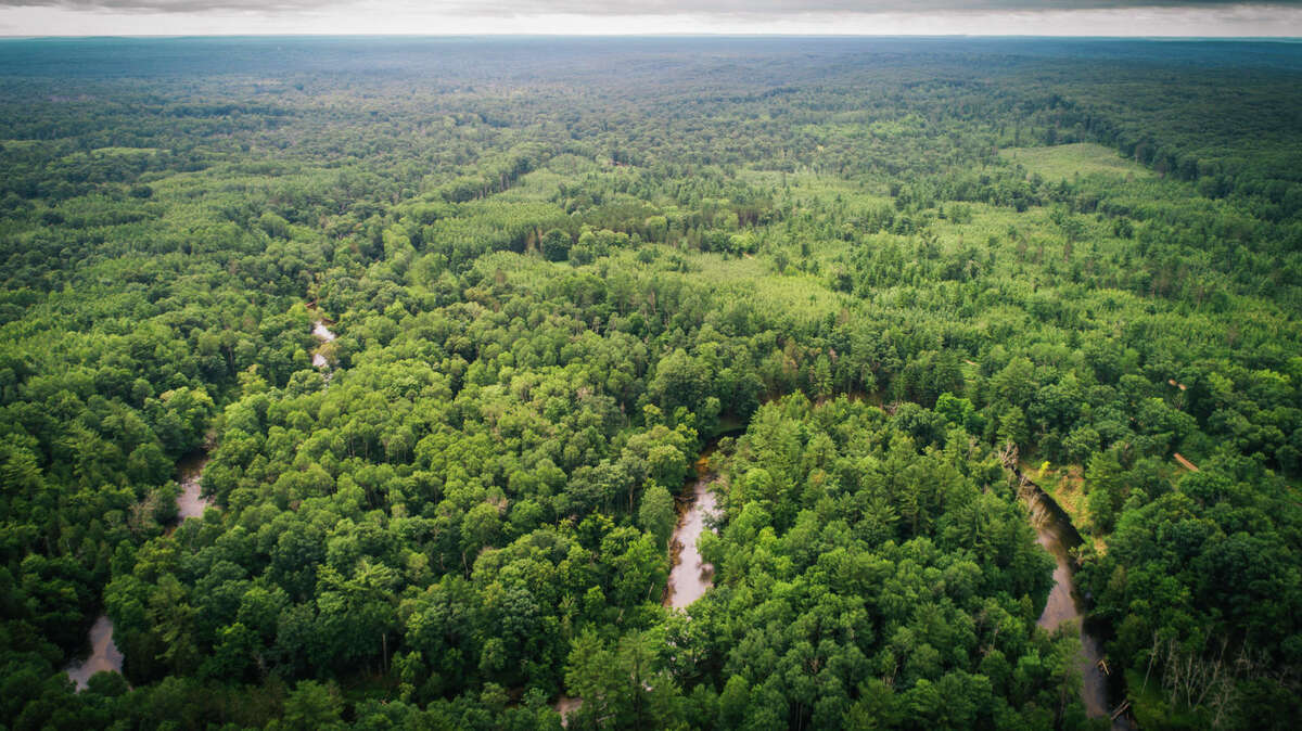 The Cannon River Ranch includes 685 wooded acres.