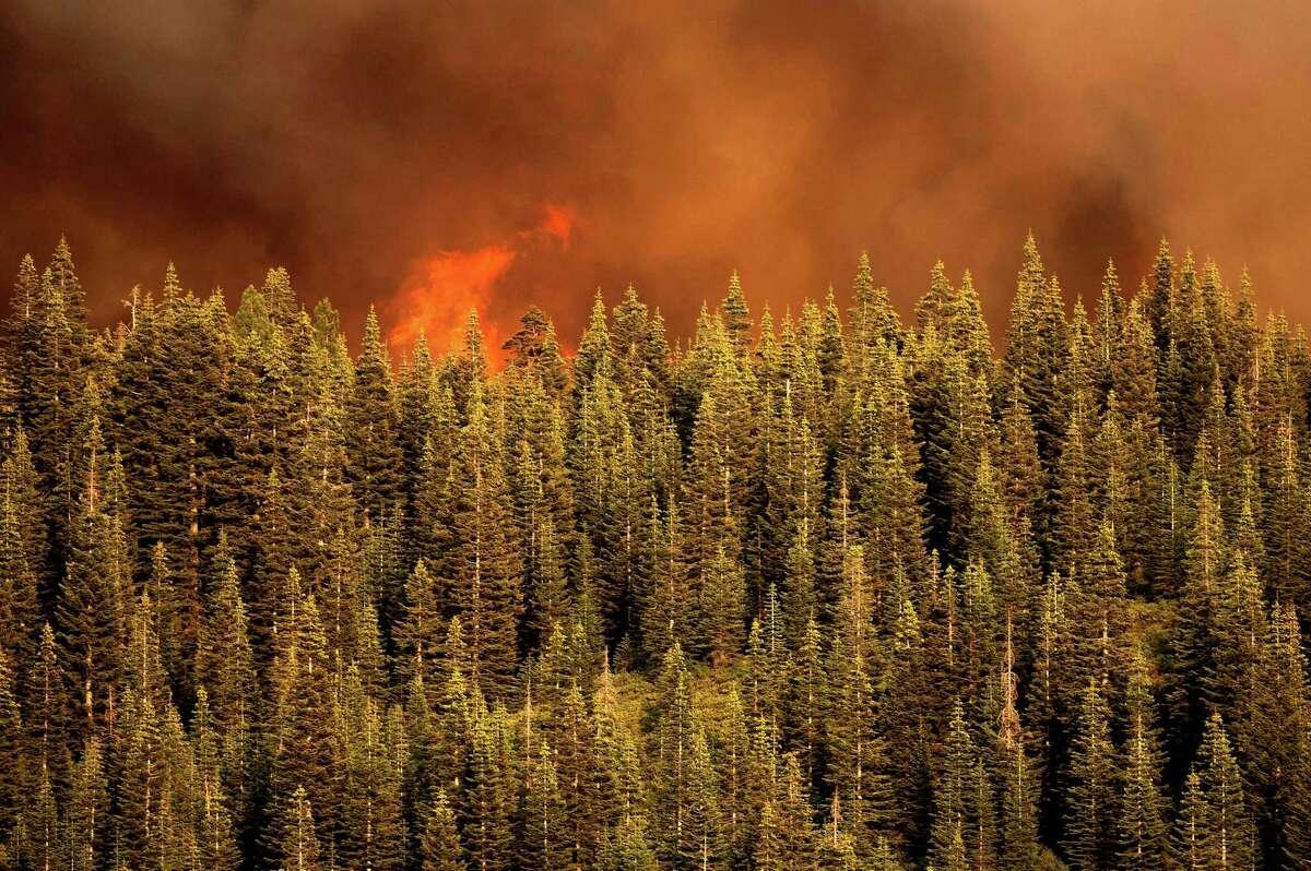 Flames from the Dixie Fire crest a ridge in Lassen National Forest, Calif., near Jonesville.