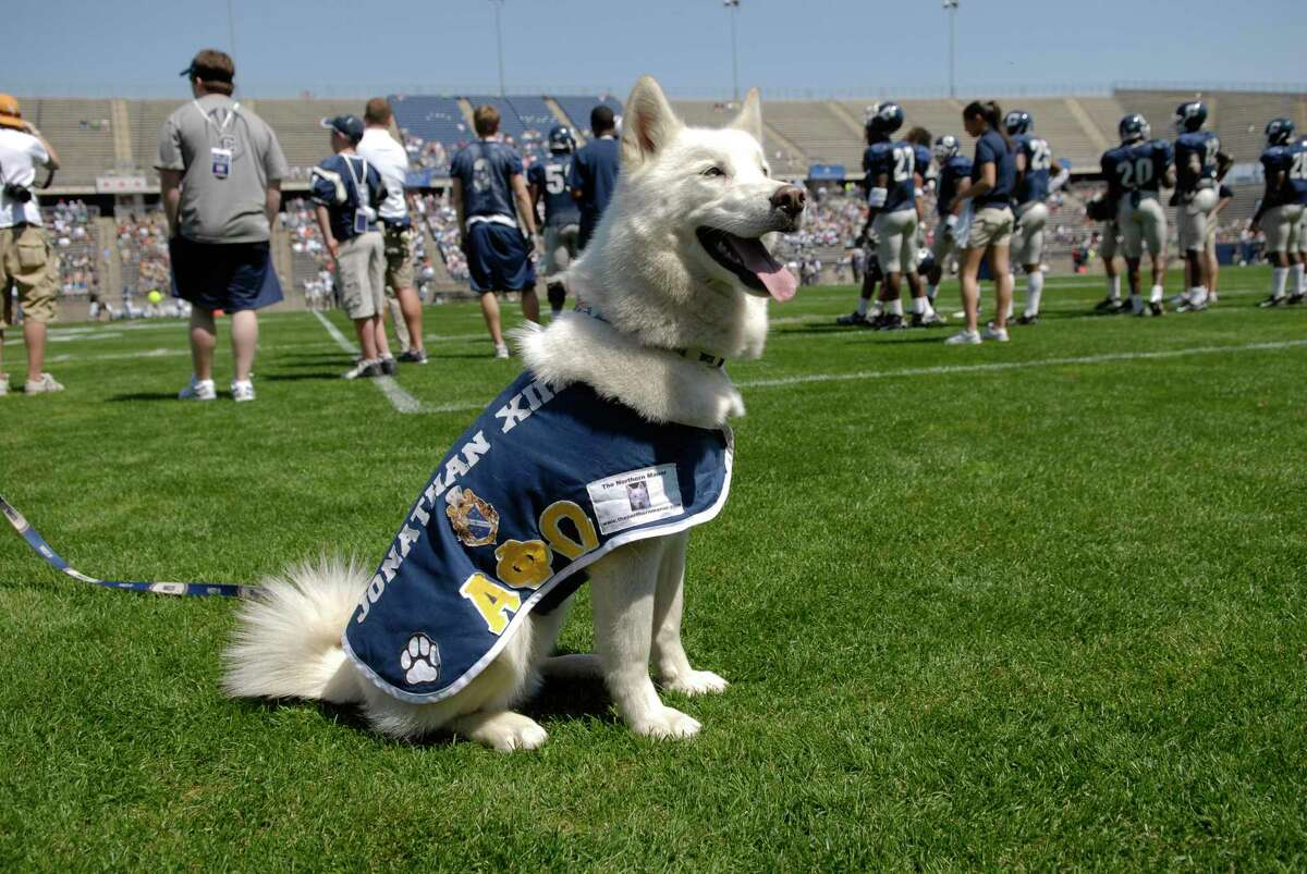 Jonathan XIII at the annual Blue & White football scrimmage at Rentschler Field.