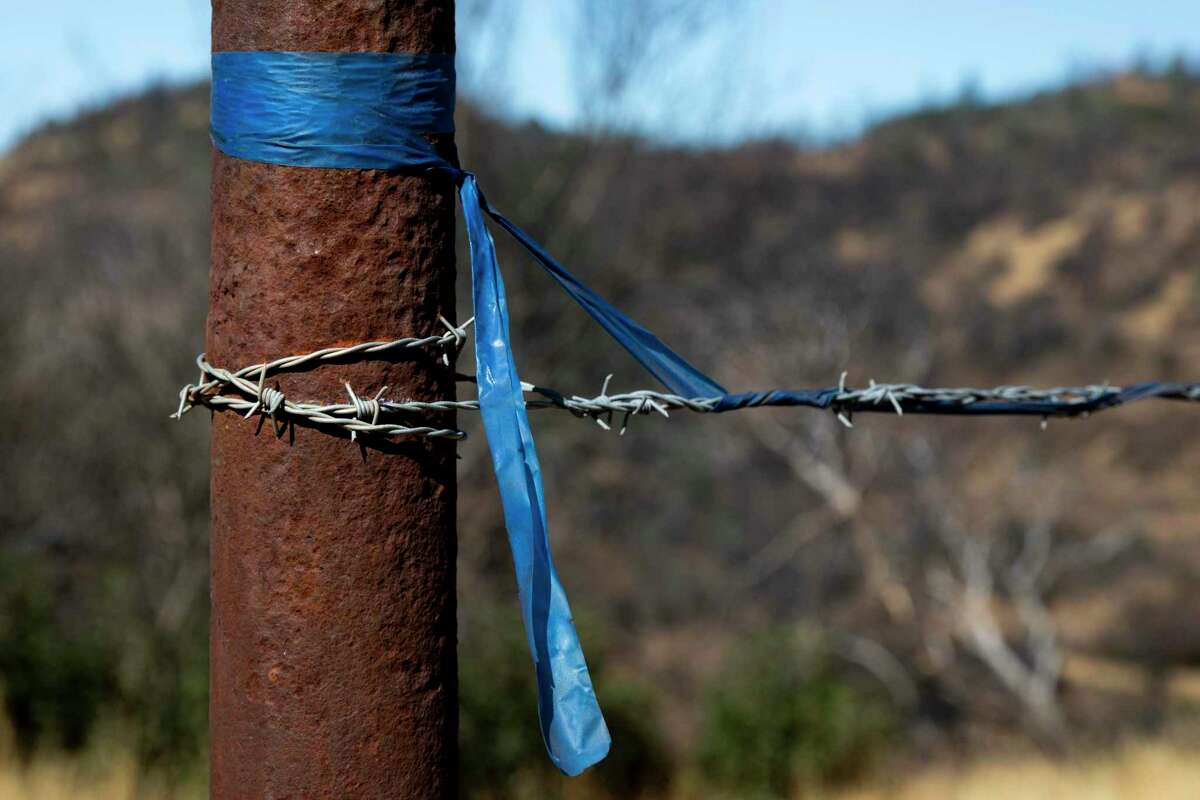 A blue ribbon left by Randy Dunn of Dunn Vineyards in Napa County during the Glass Fire in 2020. Dunn has been trying to bolster firefighting efforts in Napa Valley, and believes the conversation needs to focus on what individuals can do when a wildfire actually starts rather than focusing solely on preventive measures.