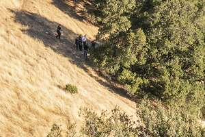 Police officials investigate Pleasanton Ridge, where authorities believe the body of Philip Kreycik was found, Tuesday, Aug. 3, 2021, in Pleasanton, Calif. Pleasanton police said the remains were found by a volunteer, who discovered the body under a tree about a quarter mile off the trail.