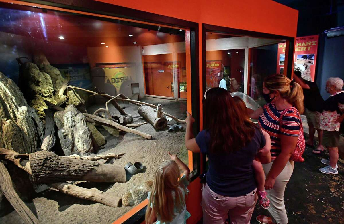 Visitors look at the current meerkat exhibit at the Maritime Aquarium Thursday, August 5, 2021, in Norwalk, Conn. The aquarium is set to receive more than $2 million to move the exhibit upstairs to make way for the Metro North Walk Bridge construction project.