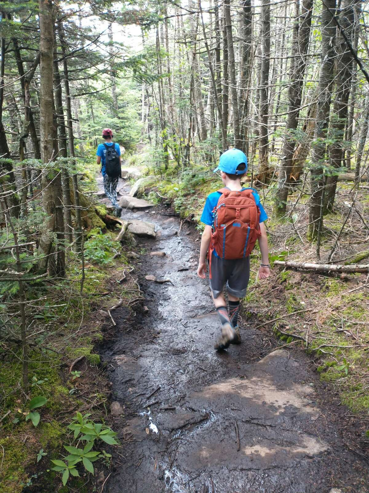 Mud was in ample supply on a recent hike up Esther Mountain in the Adirondack High Peaks.