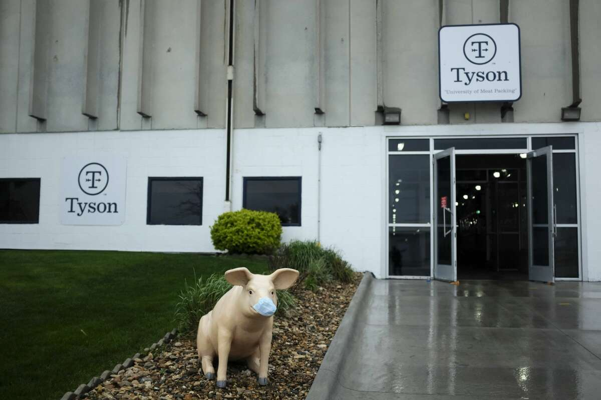 A statue of a pig is adorned with a face mask at the Tyson Foods plant in Waterloo, Iowa, on May 5, 2020. The Tyson food plant in Seguin is one the city's biggest employers.