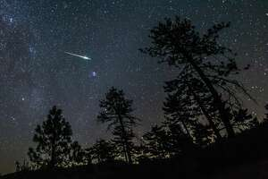 The Perseid meteor shower, an annual celestial event that peaks this week, is expected to be the best meteor shower for years to come because there will be almost no moonlight, creating optimal conditions to see what is commonly thought of as a shooting star. (Here, a meteor from the 2016 Perseid meteor shower streaks across the night sky in the Cleveland National Forest in California.)