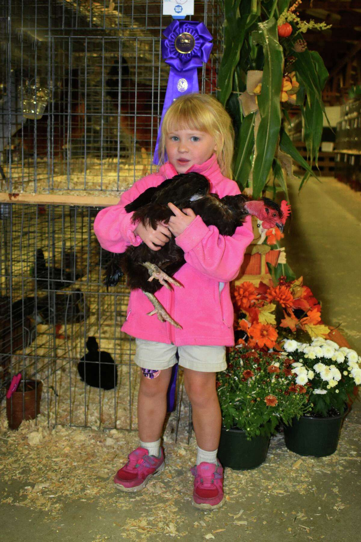 The Bethlehem Fair returns Sept. 10-12 to the fairgrounds on Route 61, with animals, competitions, rides, food, live music and games.