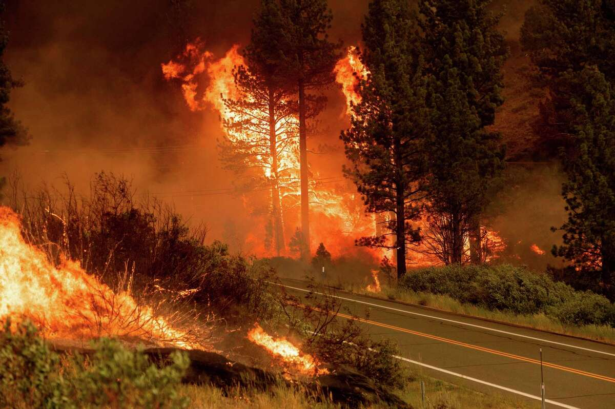 The Tamarack Fire burns in Markleeville on July 17. Scientists have asked the U.S. Forest Service to lift a new policy that bans controlled burns.