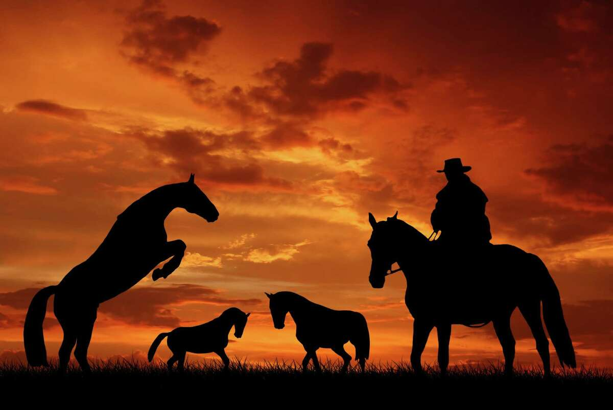 Silhouette cowboy with horses in the sunset FOR RODEO BOOK COVER DO NOT USE WITHOUT FEATURES PREMISSION