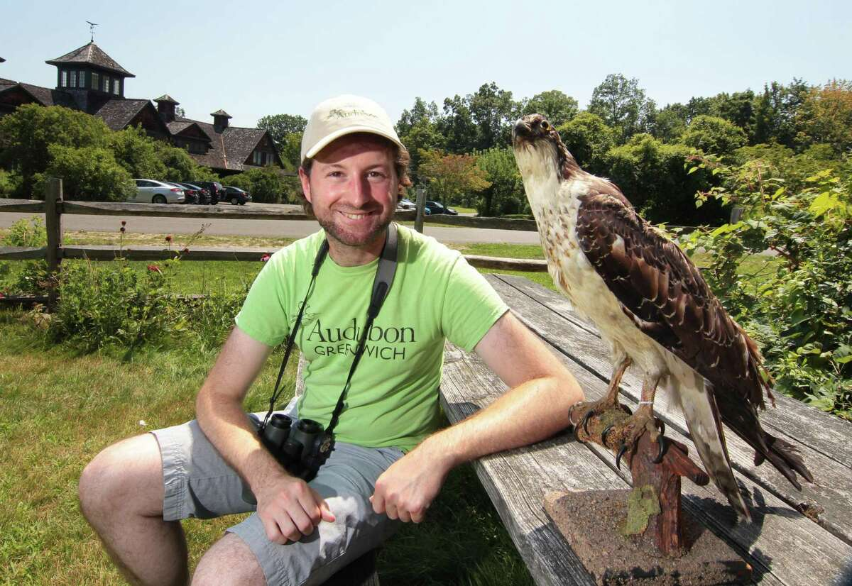 Ryan MacLean, a bird education specialist at the Greenwich Audobon Center, poses with an antique osprey from the center's taxidermy collection in Greenwich, Conn., on Friday August 6, 2021. MacLean spends a lot of his day teaching children about area birds, conservation efforts, and the natural biodiversity of the region.