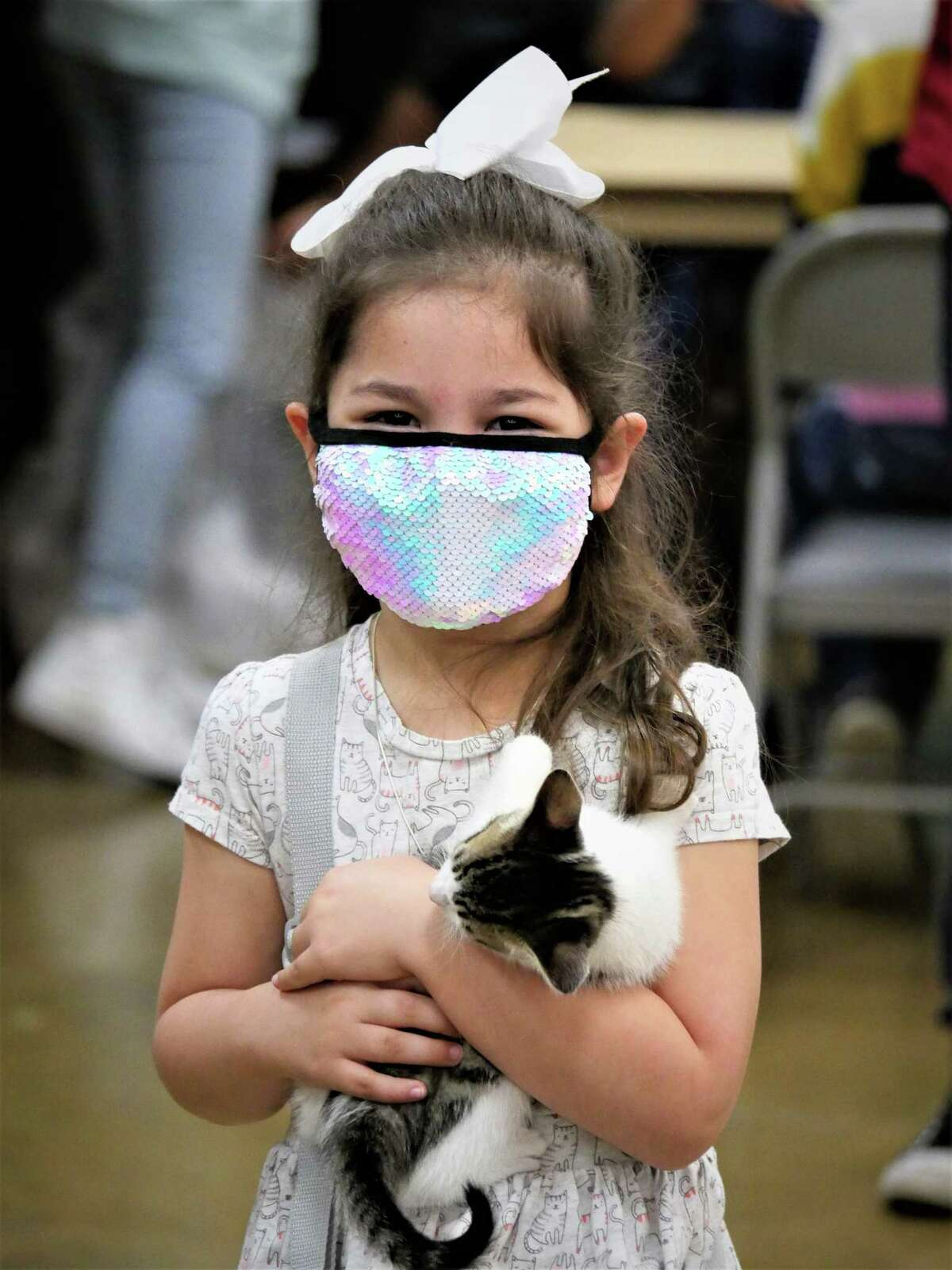 With more than 200 cats representing over 40 different breeds, the show also serves as an informational hub for cat owners to learn about feline health and provides adoption opportunities for families.