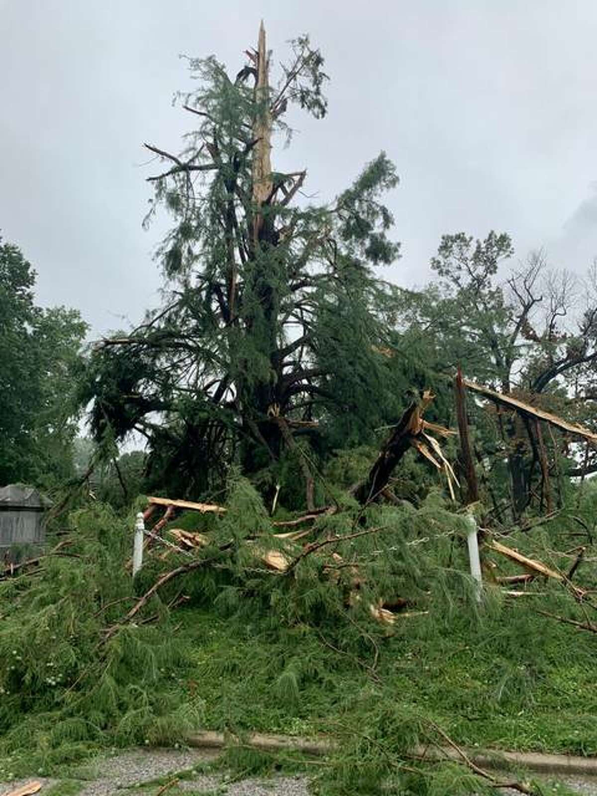 Woodlawn Cemetery sustains damage following an overnight thunderstorm into Monday.