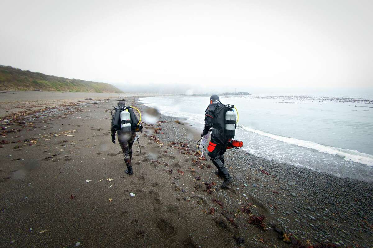 Morgan Murphy-Canella (left) and Ian Norton walk the beach back to their car after conducting an eco monitoring survey on a bull kelp restoration site at Noyo Bay in Fort Bragg.