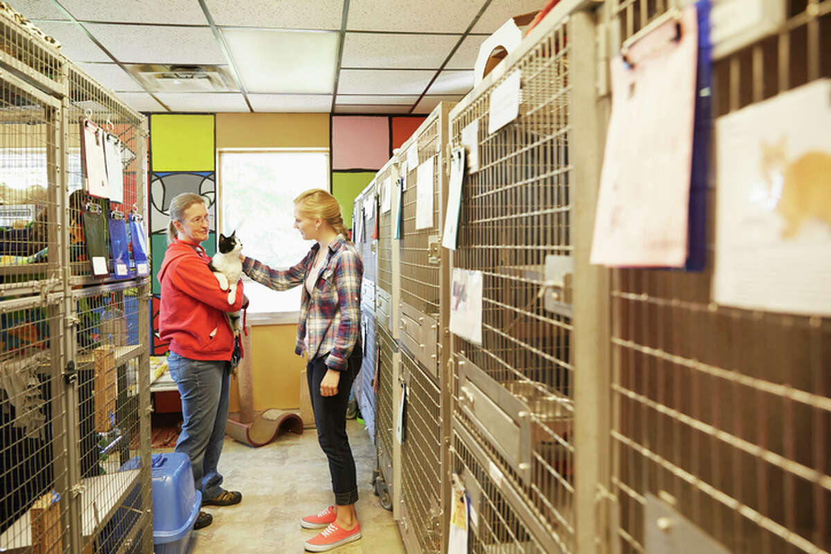 Jane Kahman, manager of of the Humane Society of Central Illinois, said county-run shelters all over the area are seeing a spike in returned pets.