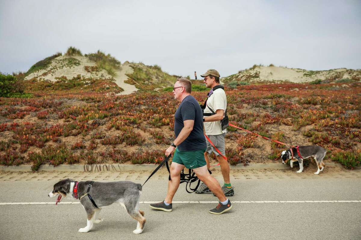 Bobby Fraher (left) and Stephen Jones walk their dogs on car-free Great Highway.