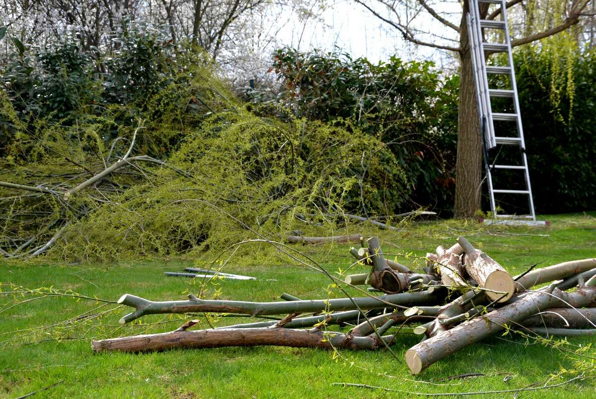 Pictured is a yard being cleaned up after storm damage.
