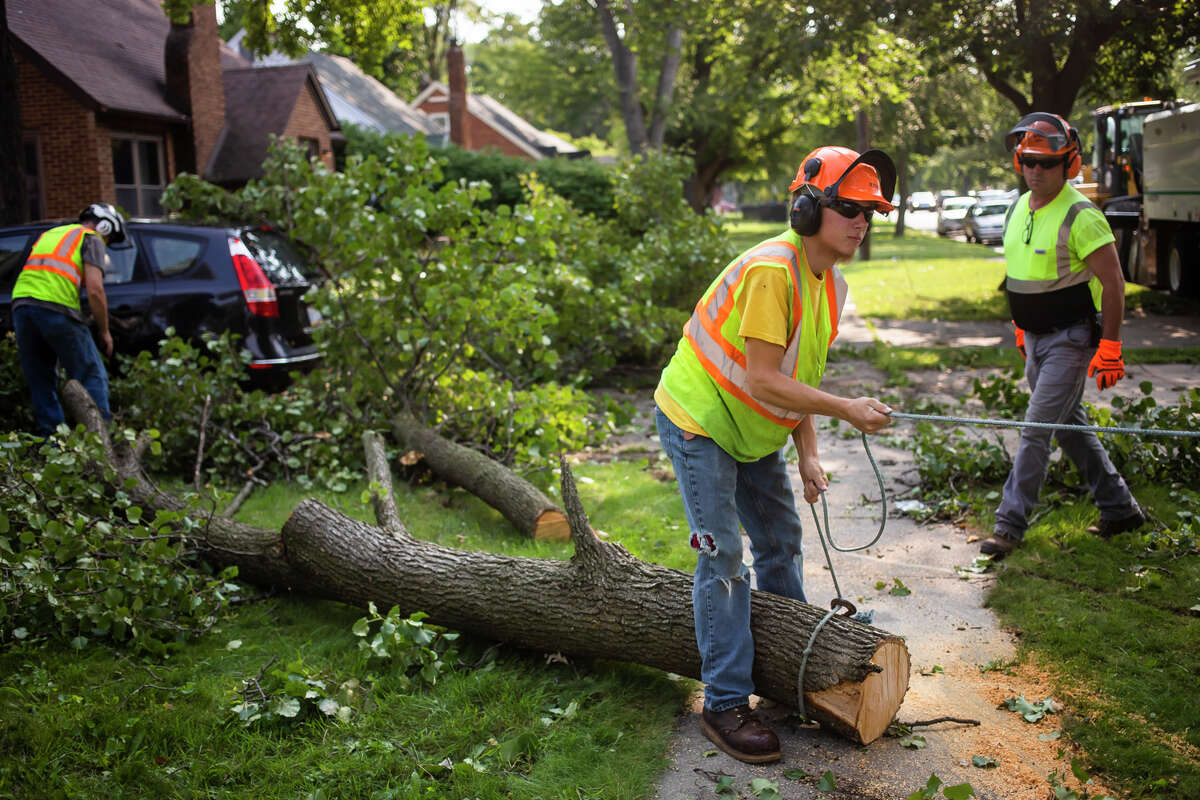 Sam Fick with the City of Midland, center, prepares to pull a tree branch into a woodchipper Wednesday, Aug. 11, 2021 after a severe thunderstorm the night before. (Katy Kildee/kkildee@mdn.net)