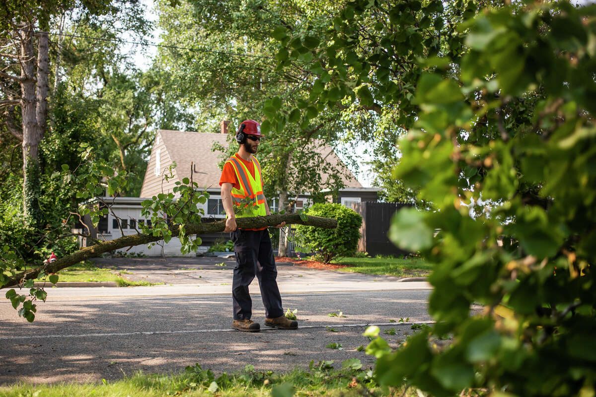 File - Dean Meyer with the City of Midland carries a tree branch from a Midland resident's front yard towards a woodchipper Wednesday, Aug. 11, 2021 after a severe thunderstorm the night before. (Katy Kildee/kkildee@mdn.net)