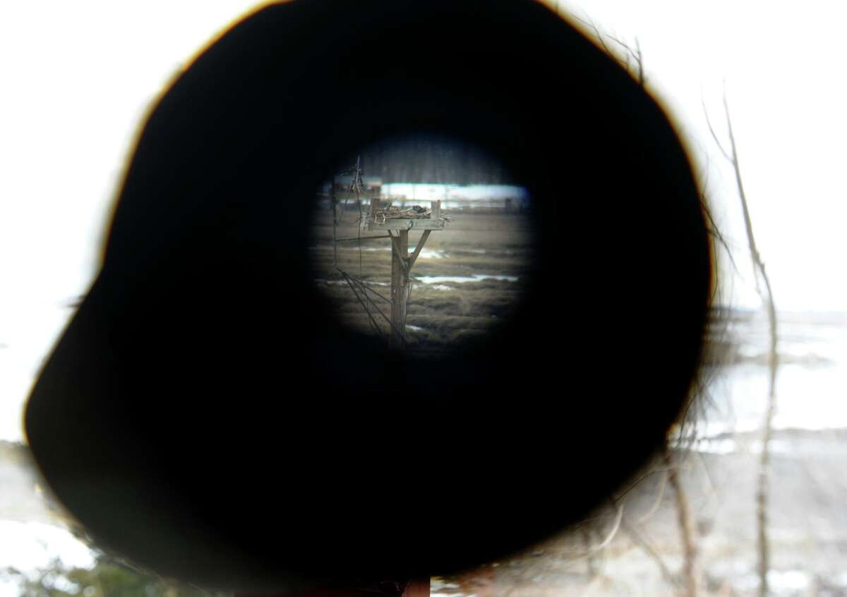 A view through a telescope shows an osprey nest is seen from the Milford Audubon Society center in Milford, Conn. in 2013.