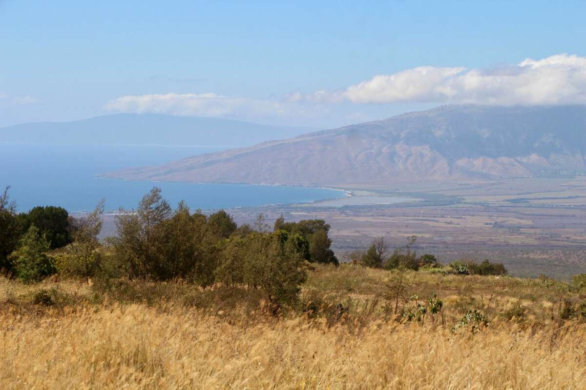 Upcountry Maui has long had water issues, with some locals waiting for access for generations.
