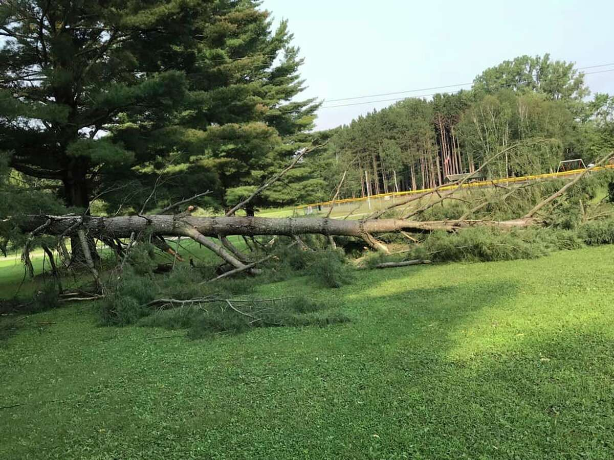 This photo shows a large tree snapped at the base due to Wednesday's storm. The photo, submitted by Ronda L Zuern Macias, is pictured along East Main Street in Mecosta. (Photo courtesy of Ronda L Zuern Marcias)