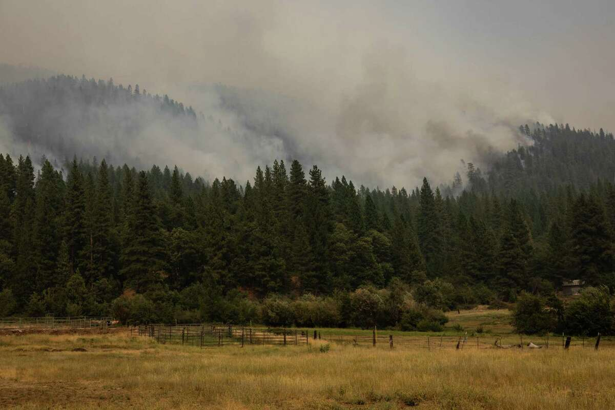 GREENVILLE, CA - AUGUST 08: Smoke fills the air as the mountainside burns on August 8, 2021 in Greenville, California. The Dixie Fire, which has incinerated more than 463,000 acres, is the second largest recorded wildfire in state history and remains only 21 percent contained. (Photo by Maranie R. Staab/Getty Images)